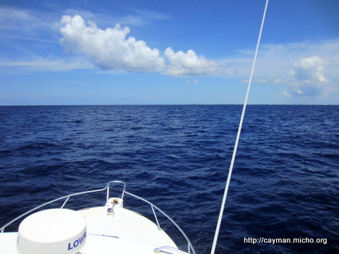 Living in grand cayman deep sea fishing second time for Deep sea fishing grand cayman